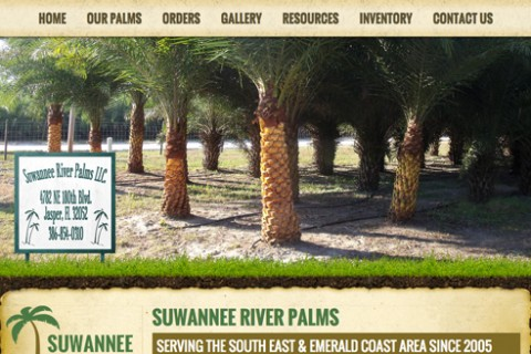 Suwannee River Palms